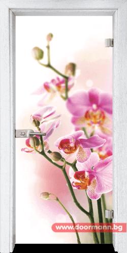 Врата Print G 13 2 Y